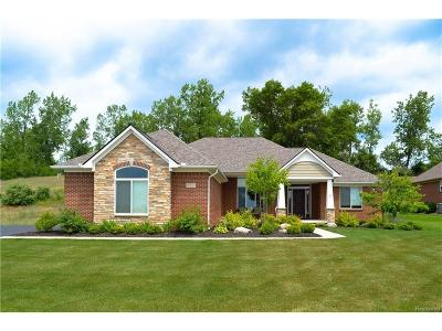 Oxford Single Family Home For Sale: 1095 Wood Trail Drive