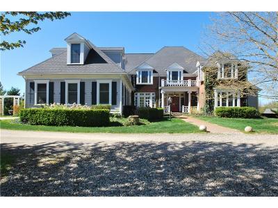 Metamora Twp MI Single Family Home For Sale: $1,399,000