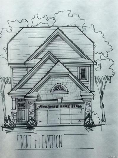 Pontiac Single Family Home For Sale: 227 Chamberlain Street