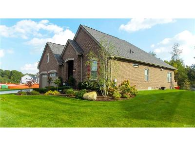 Commerce Twp Single Family Home For Sale: 3185 Fortune Lane