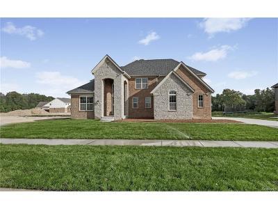 Lyon Twp Single Family Home For Sale: 22884 Cyprus Drive