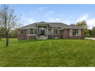 Salem Twp MI Single Family Home For Sale: $675,000