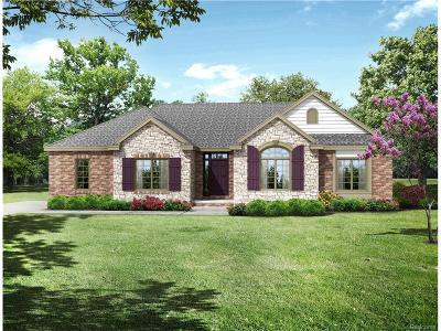 Oxford Single Family Home For Sale: 1058 Watersmeet