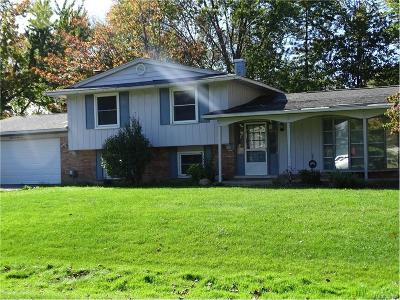 West Bloomfield Twp MI Single Family Home For Sale: $240,000