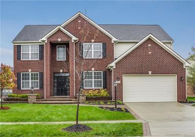 Novi Single Family Home For Sale: 41676 Crane Way