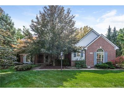 Novi Single Family Home For Sale: 25530 Arcadia Drive