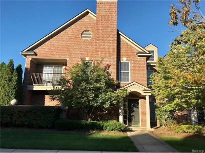 Pittsfield, Pittsfield Twp Rental For Rent: 5726 Hampshire Lane