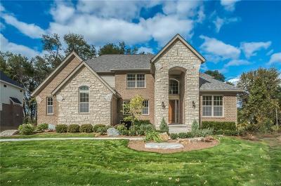 Novi Single Family Home For Sale: 47512 Alpine Drive
