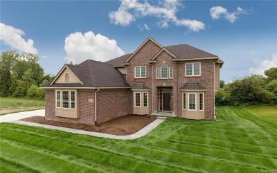 Novi Single Family Home For Sale: 47476 Alpine Drive