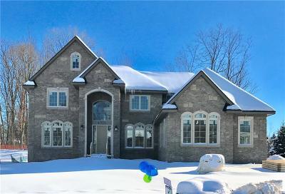 Novi Single Family Home For Sale: 47571 Alpine Drive