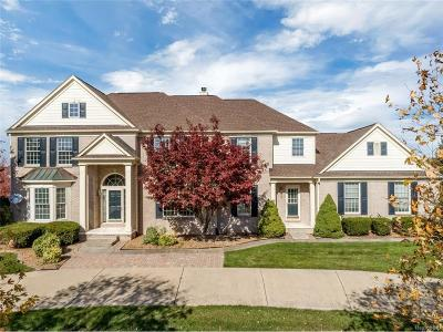 Plymouth Twp Single Family Home For Sale: 50380 Top Of Hill Drive