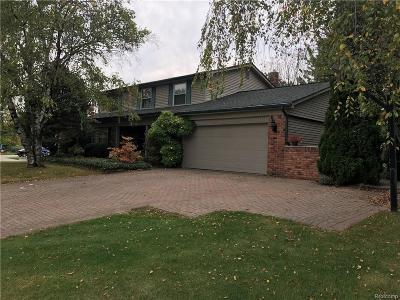 Farmington Hills Single Family Home For Sale: 31231 Berryhill Road