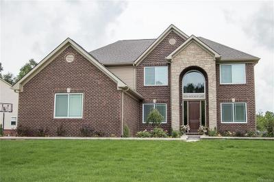 Oxford Single Family Home For Sale: 663 Overlook Drive