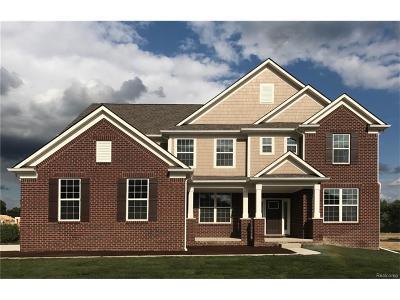 Canton Single Family Home For Sale: 5700 Blackburn