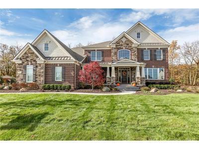 Northville Twp Single Family Home For Sale: 17387 Briar Ridge Lane