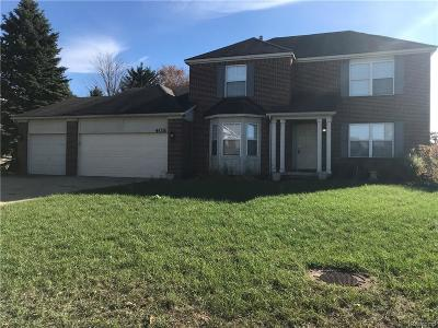 Commerce Twp Single Family Home For Sale: 405 Austin Street