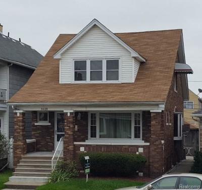 Hamtramck Single Family Home For Sale: 3428 Holbrook Street