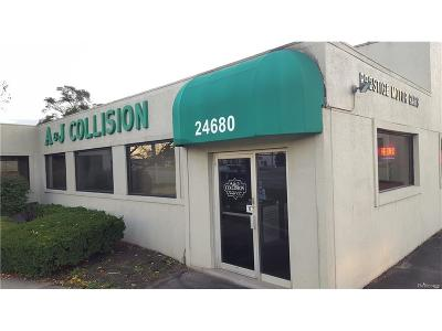 Southfield Commercial For Sale: 24680 Telegraph Road