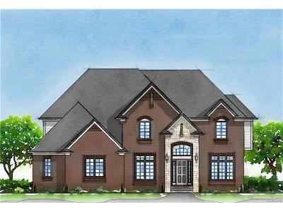Novi Single Family Home For Sale: 23125 Martell Court