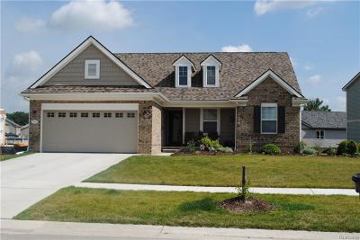 Monroe County Single Family Home For Sale: 9253 Birch Pointe Drive