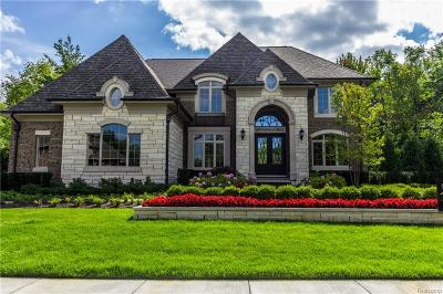 Novi Single Family Home For Sale: 22435 Montebello Court