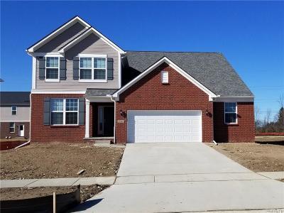 Novi Single Family Home For Sale: 25667 Oberlin Court