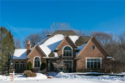 Novi Single Family Home For Sale: 23170 Inverness
