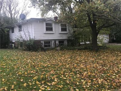 Farmington Hills Single Family Home For Sale: 31977 W Thirteen Mile Road