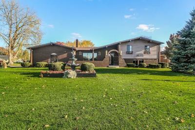 White Lake Single Family Home For Sale: 9059 Sandy Ridge Drive
