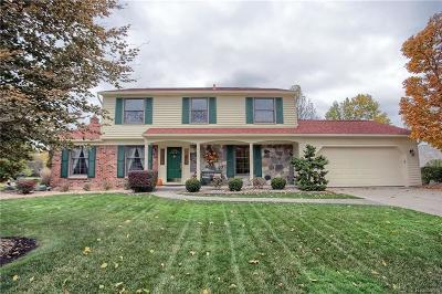 Farmington Hills Single Family Home For Sale: 36090 Crompton Circle