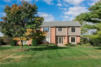 Novi Single Family Home For Sale: 25229 Birchwoods Drive