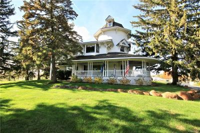 Novi Single Family Home For Sale: 25805 Beck Road