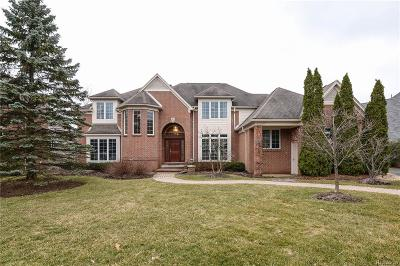 Bloomfield Twp Single Family Home For Sale: 3033 Ridge