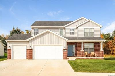 Lyon Twp Single Family Home For Sale: 3292 Milford Road