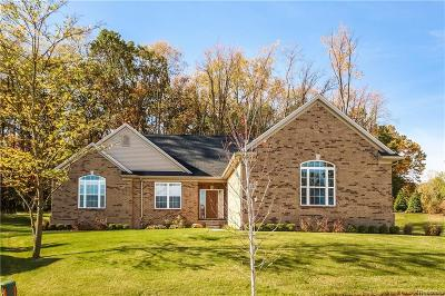 Lyon Twp Single Family Home For Sale: 3297 Milford Road