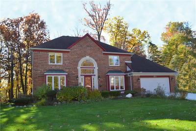 Farmington Hills Single Family Home For Sale: 37549 Glengrove Drive