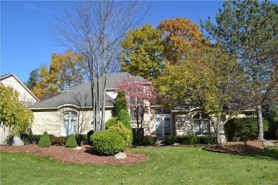 Farmington Hills Single Family Home For Sale: 30994 Pine Cone