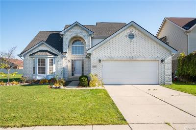 Woodhaven Single Family Home For Sale: 26765 Coronation Drive