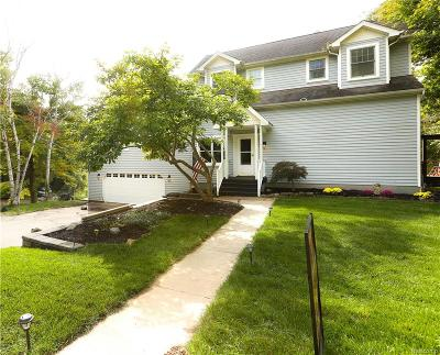 Northville Twp Single Family Home For Sale: 46161 Frederick Street