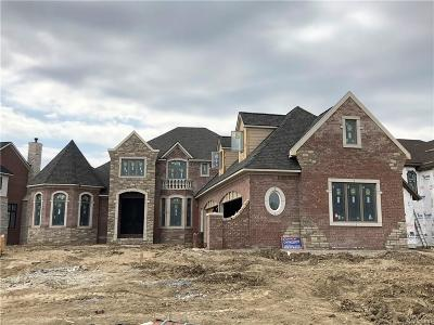 Green Oak Twp MI Single Family Home For Sale: $1,350,000