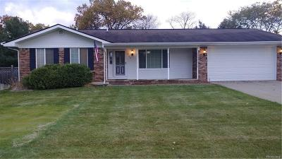White Lake Single Family Home For Sale: 9120 Glasgow Drive