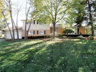 West Bloomfield Twp Single Family Home For Sale: 5549 Castleton Drive