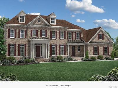 Northville Twp Single Family Home For Sale: 19042 Florissant Drive