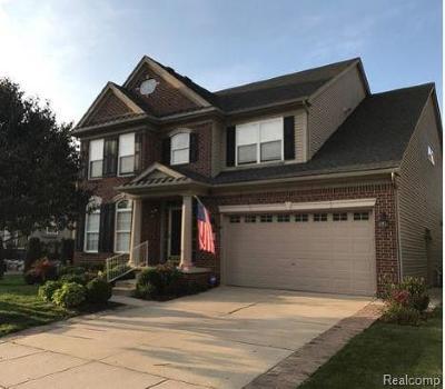Novi Single Family Home For Sale: 51160 Hallfield Street