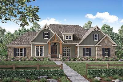 Novi Single Family Home For Sale: Taft Rd.