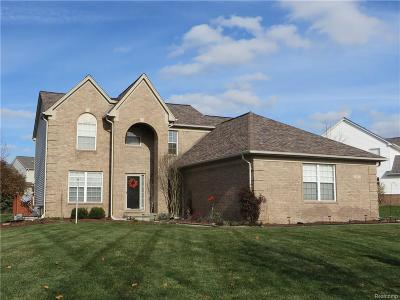 City Of The Vlg Of Clarkston, Clarkston, Independence, Independence Twp Single Family Home For Sale: 4943 Spring Meadow Drive