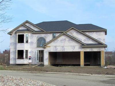 Woodhaven Single Family Home For Sale: 26901 Cedar Run