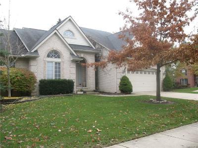 Novi Single Family Home For Sale: 41279 Scarborough Lane