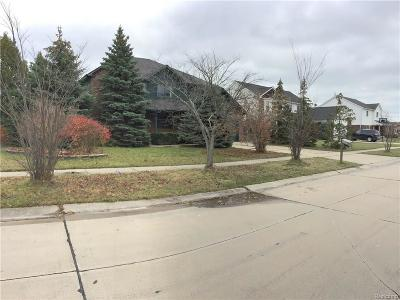 Chesterfield Twp MI Single Family Home For Sale: $244,900