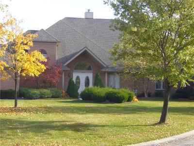 Novi Single Family Home For Sale: 22463 Norfolk Court